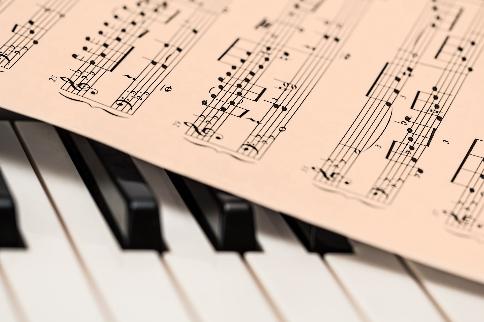 Muziekgroepen